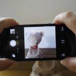 スマホカメラ、子供、アプリ